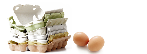 Eier mit Karton
